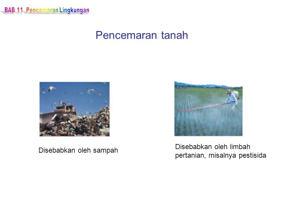 Pencemaran tanah Disebabkan oleh sampah Disebabkan oleh limbah pertanian, misalnya pestisida