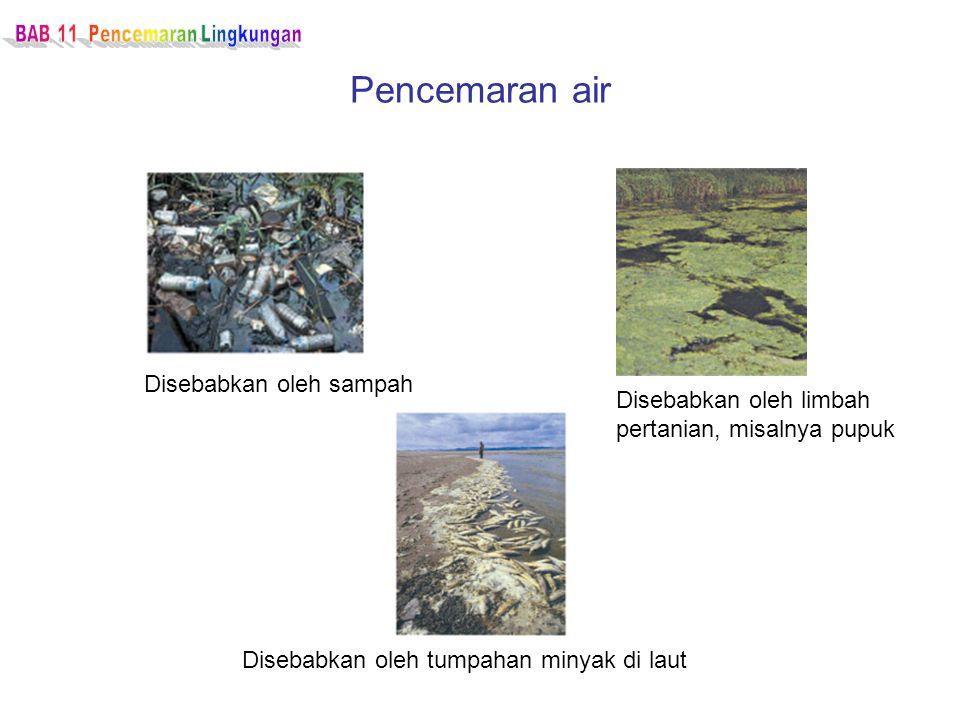 Pencemaran air Disebabkan oleh sampah Disebabkan oleh limbah pertanian, misalnya pupuk Disebabkan oleh tumpahan minyak di laut