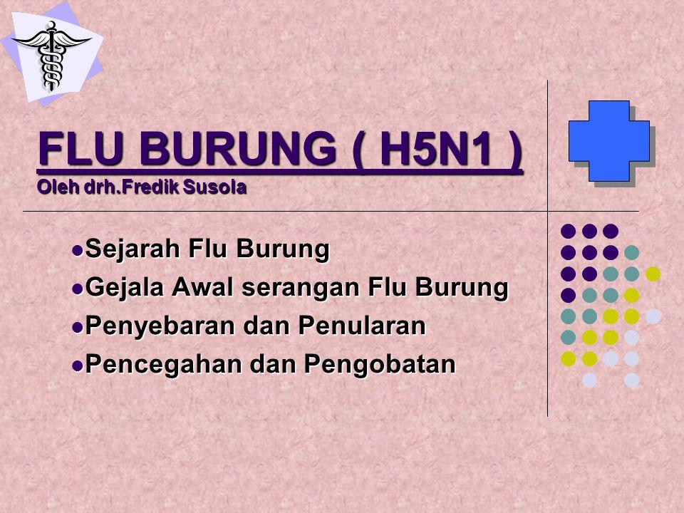 FLU BURUNG ( H5N1 ) Oleh drh.Fredik Susola Sejarah Flu Burung Sejarah Flu Burung Gejala Awal serangan Flu Burung Gejala Awal serangan Flu Burung Penye