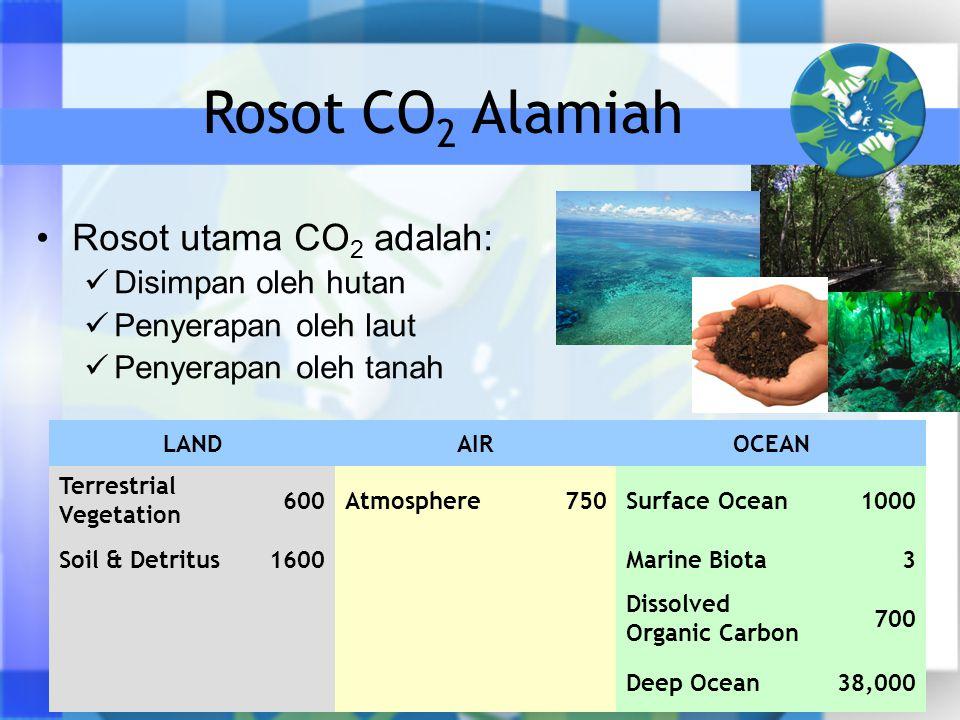 Rosot utama CO 2 adalah: Disimpan oleh hutan Penyerapan oleh laut Penyerapan oleh tanah LANDAIROCEAN Terrestrial Vegetation 600Atmosphere750Surface Ocean1000 Soil & Detritus1600 Marine Biota3 Dissolved Organic Carbon 700 Deep Ocean38,000 Rosot CO 2 Alamiah