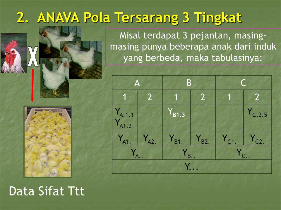 2. ANAVA Pola Tersarang 3 Tingkat Data Sifat Ttt Misal terdapat 3 pejantan, masing- masing punya beberapa anak dari induk yang berbeda, maka tabulasin