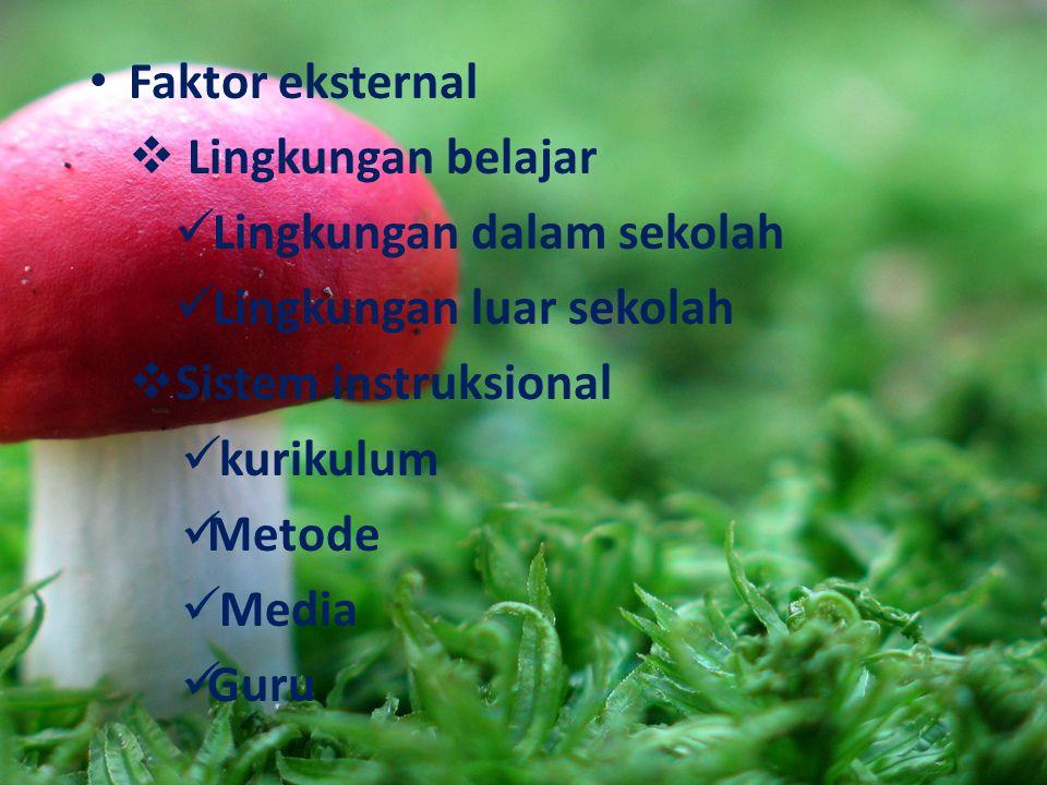 Faktor eksternal  Lingkungan belajar Lingkungan dalam sekolah Lingkungan luar sekolah SSistem instruksional kurikulum Metode Media Guru