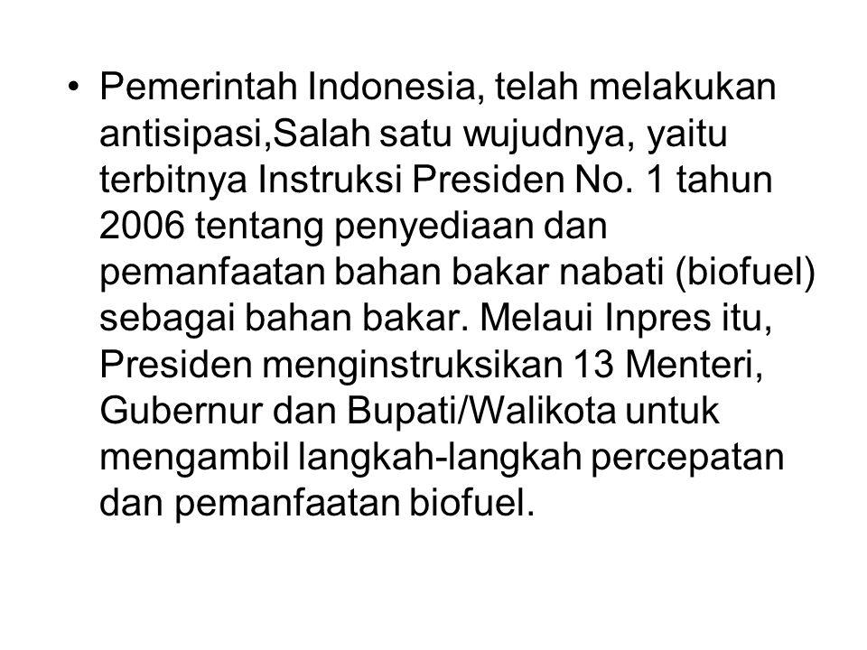 Pemerintah Indonesia, telah melakukan antisipasi,Salah satu wujudnya, yaitu terbitnya Instruksi Presiden No. 1 tahun 2006 tentang penyediaan dan peman