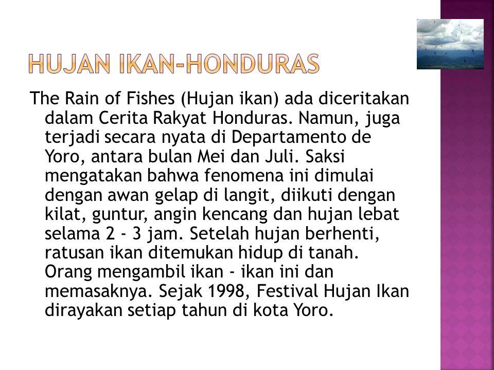 The Rain of Fishes (Hujan ikan) ada diceritakan dalam Cerita Rakyat Honduras. Namun, juga terjadi secara nyata di Departamento de Yoro, antara bulan M