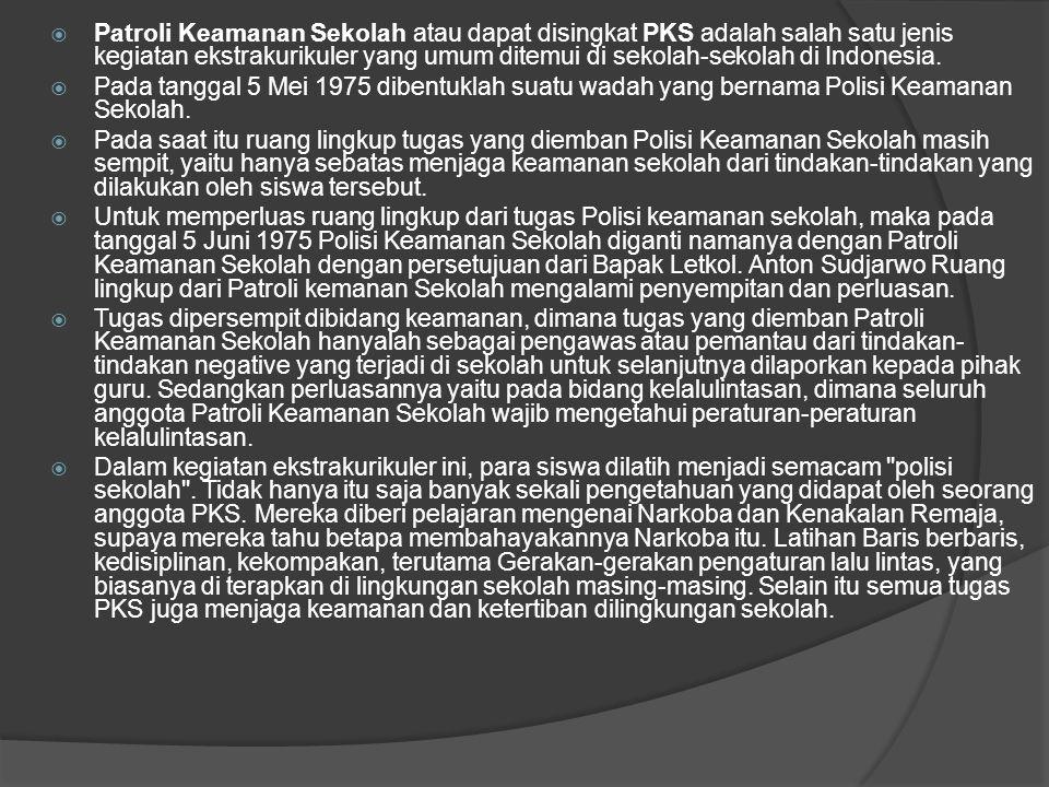  Patroli Keamanan Sekolah atau dapat disingkat PKS adalah salah satu jenis kegiatan ekstrakurikuler yang umum ditemui di sekolah-sekolah di Indonesia.