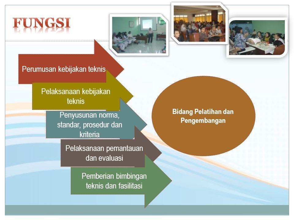 Perumusan kebijakan teknis Pelaksanaan kebijakan teknis Penyusunan norma, standar, prosedur dan kriteria Pelaksanaan pemantauan dan evaluasi Pemberian