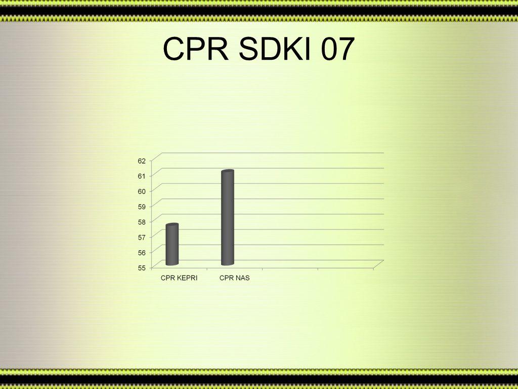 CPR SDKI 07