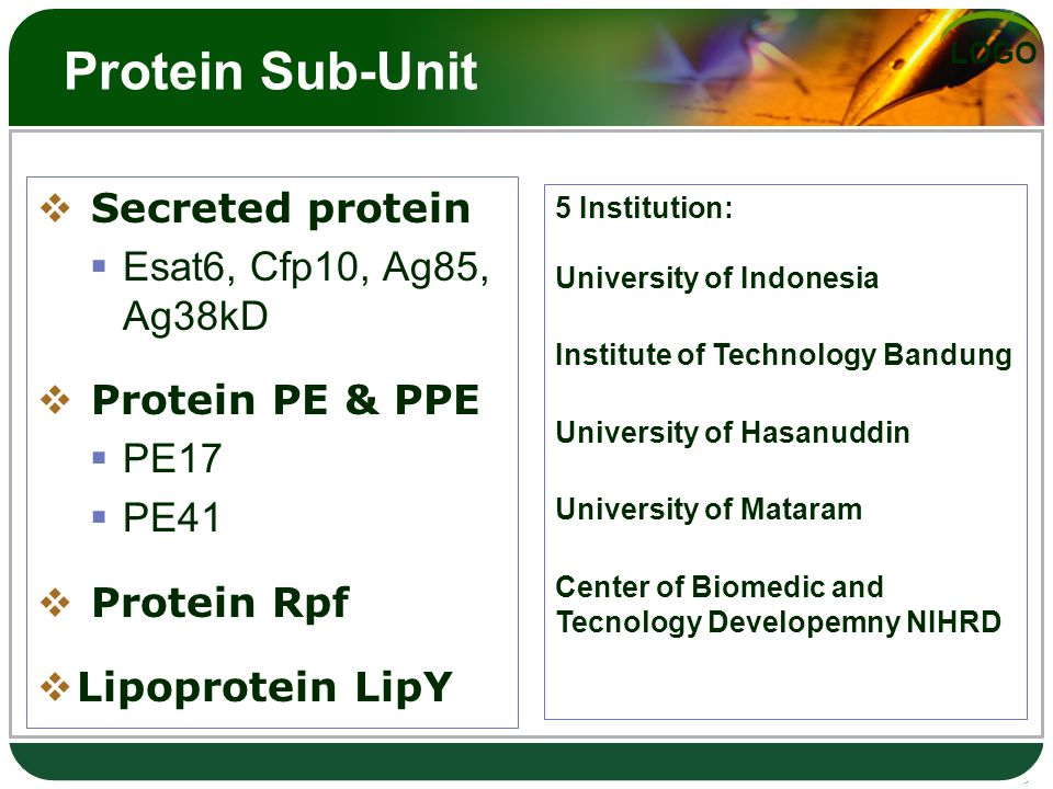 LOGO Protein Sub-Unit  Secreted protein  Esat6, Cfp10, Ag85, Ag38kD  Protein PE & PPE  PE17  PE41  Protein Rpf  Lipoprotein LipY 5 Institution: University of Indonesia Institute of Technology Bandung University of Hasanuddin University of Mataram Center of Biomedic and Tecnology Developemny NIHRD