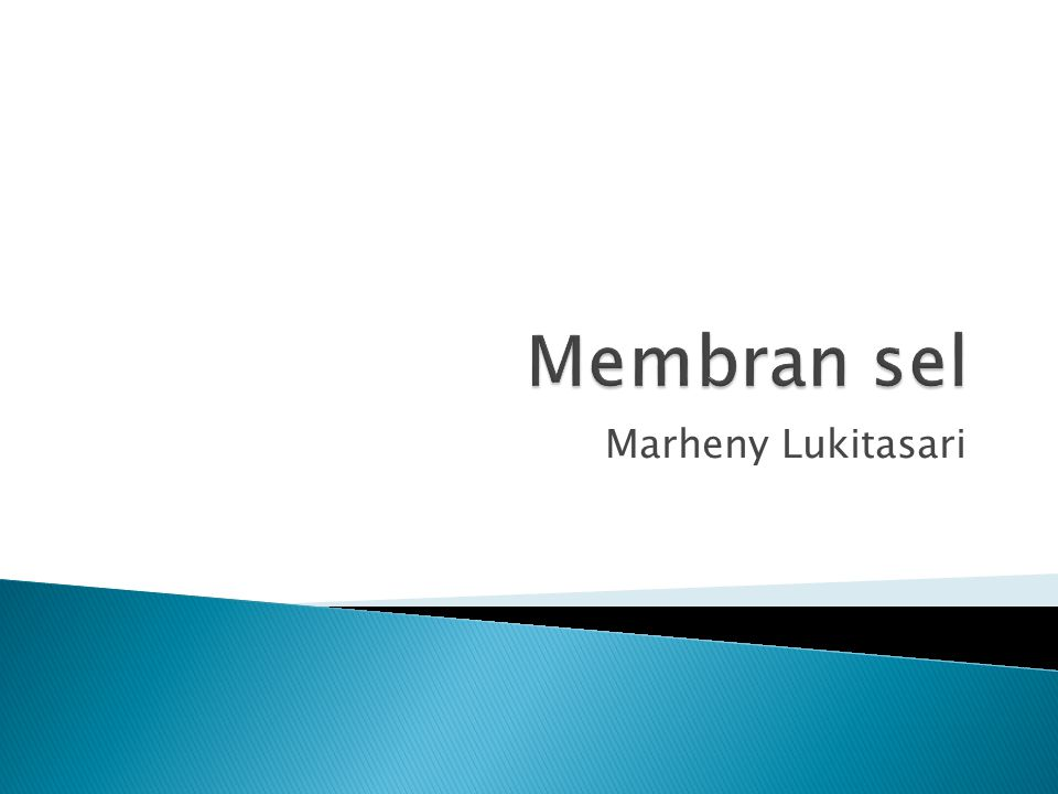 Marheny Lukitasari