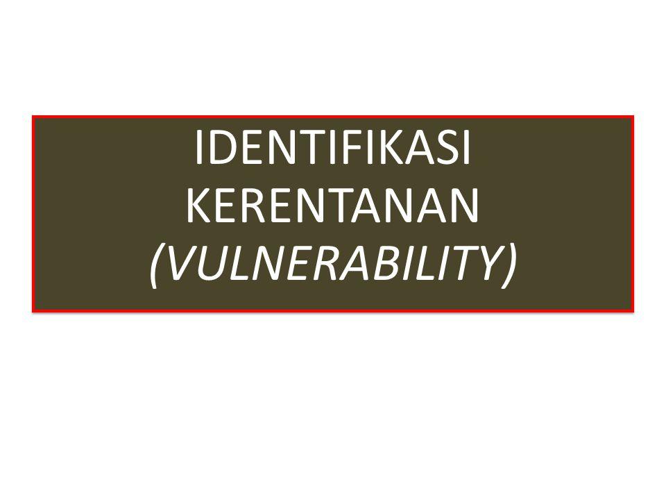 IDENTIFIKASI KERENTANAN (VULNERABILITY)