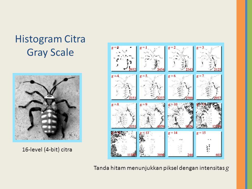 The Histogram of a Grayscale Image Histogram : Jumlah piksel dengan intensitas g Piksel tanda hitam dengan intensitas g