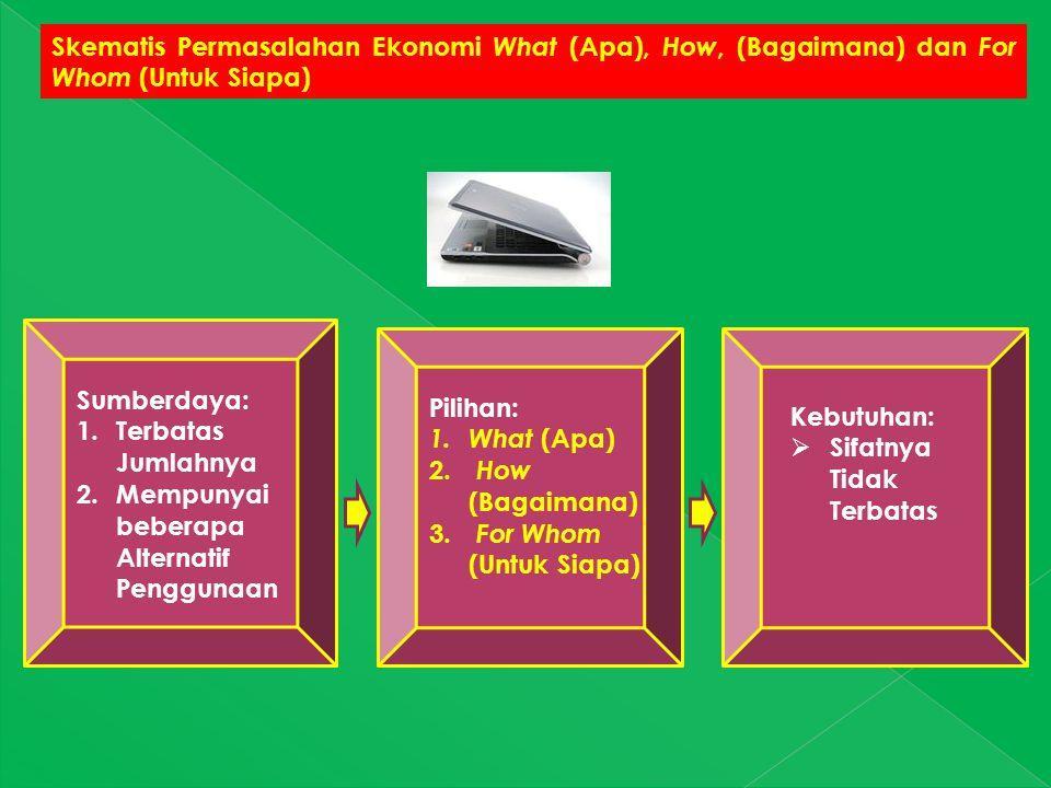 Skematis Permasalahan Ekonomi What (Apa), How, (Bagaimana) dan For Whom (Untuk Siapa) Sumberdaya: 1.Terbatas Jumlahnya 2.Mempunyai beberapa Alternatif