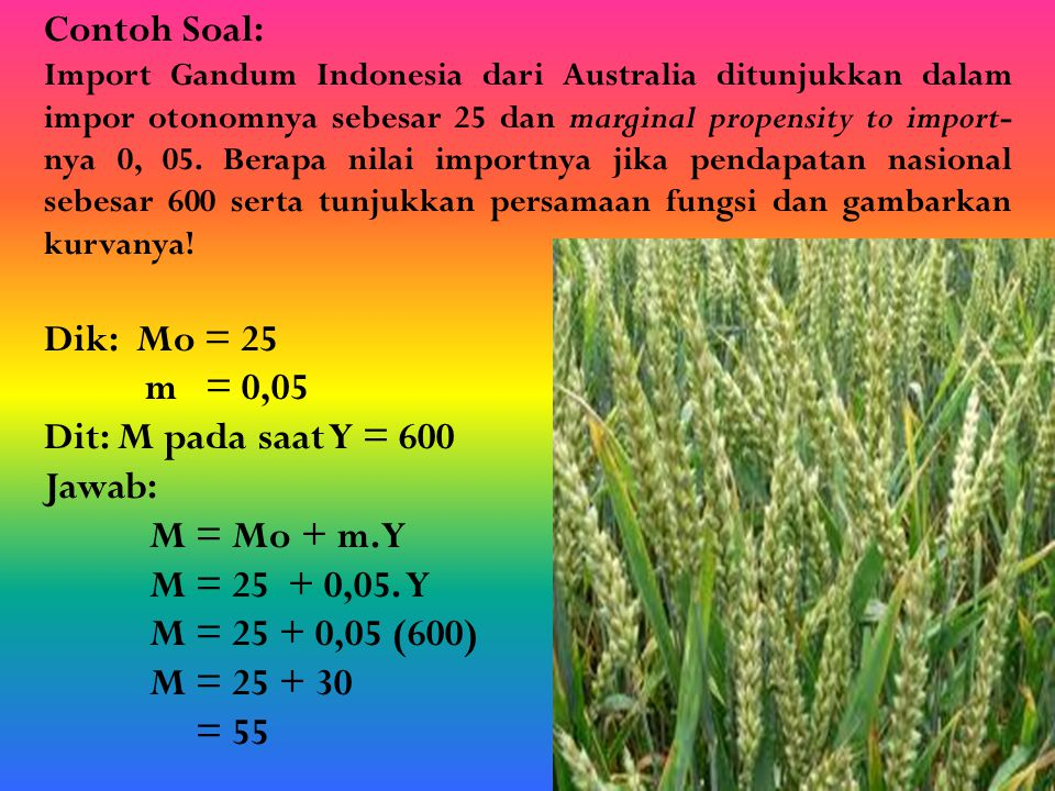 Contoh Soal: Import Gandum Indonesia dari Australia ditunjukkan dalam impor otonomnya sebesar 25 dan marginal propensity to import- nya 0, 05. Berapa