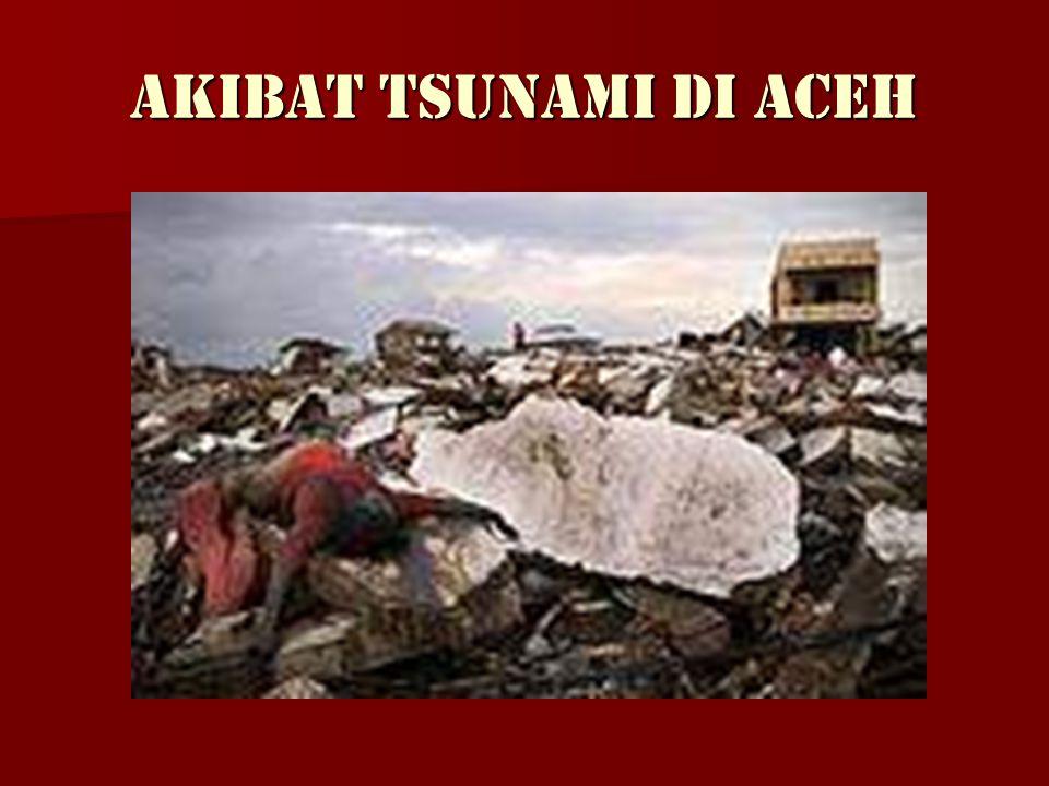 TSUNAMI DI ACEH TAHUN 2004 LEBIH DARI 300 000 ORANG YANG MENINGGAL