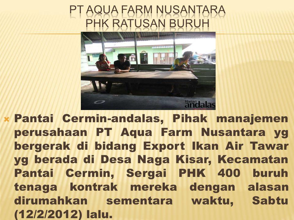  Pantai Cermin-andalas, Pihak manajemen perusahaan PT Aqua Farm Nusantara yg bergerak di bidang Export Ikan Air Tawar yg berada di Desa Naga Kisar, Kecamatan Pantai Cermin, Sergai PHK 400 buruh tenaga kontrak mereka dengan alasan dirumahkan sementara waktu, Sabtu (12/2/2012) lalu.