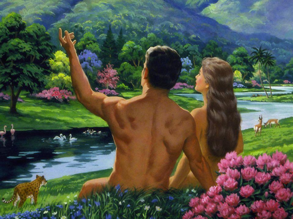 KEJADIAN 1:29 Berfirmanlah Allah: Lihatlah, Aku memberikan kepadamu segala tumbuh- tumbuhan yang berbiji di seluruh bumi dan segala pohon-pohonan yang buahnya berbiji; itulah akan menjadi makananmu.