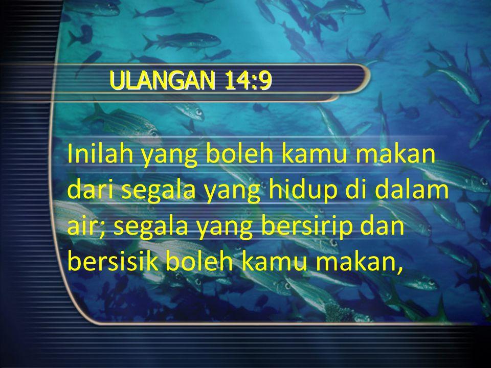 ULANGAN 14:9 Tetapi segala yang tidak bersirip atau bersisik di dalam lautan dan di dalam sungai, dari segala yang berkeriapan di dalam air dan dari segala makhluk hidup yang ada di dalam air, semuanya itu kejijikan bagimu.