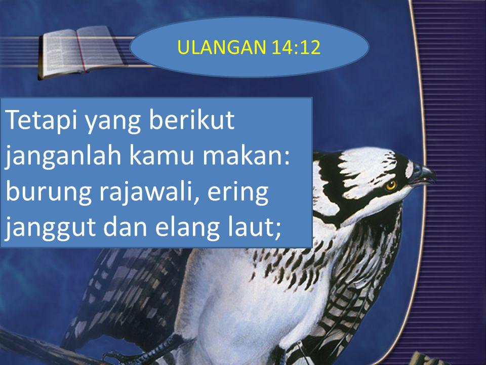 Maksud Allah Umatnya Menghindari Makanan HARAM 1. Supayah Kamu Kudus