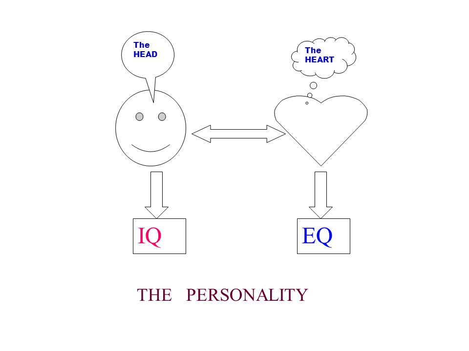 EQIQ THE PERSONALITY The HEAD The HEART