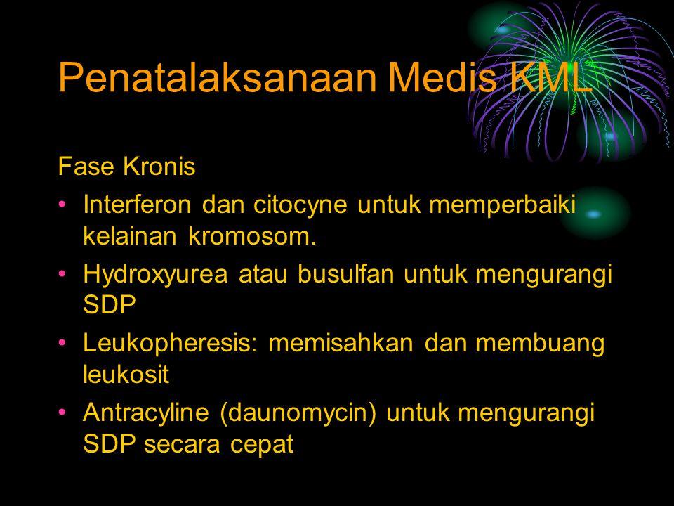 Penatalaksanaan Medis KML Fase Kronis Interferon dan citocyne untuk memperbaiki kelainan kromosom. Hydroxyurea atau busulfan untuk mengurangi SDP Leuk