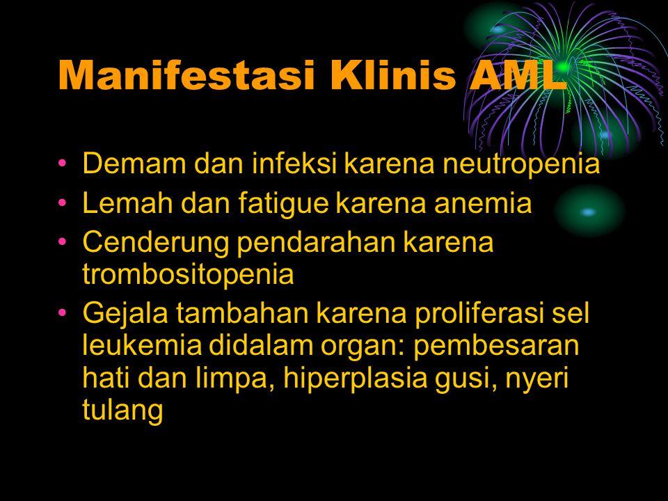 Manifestasi Klinis AML Demam dan infeksi karena neutropenia Lemah dan fatigue karena anemia Cenderung pendarahan karena trombositopenia Gejala tambaha