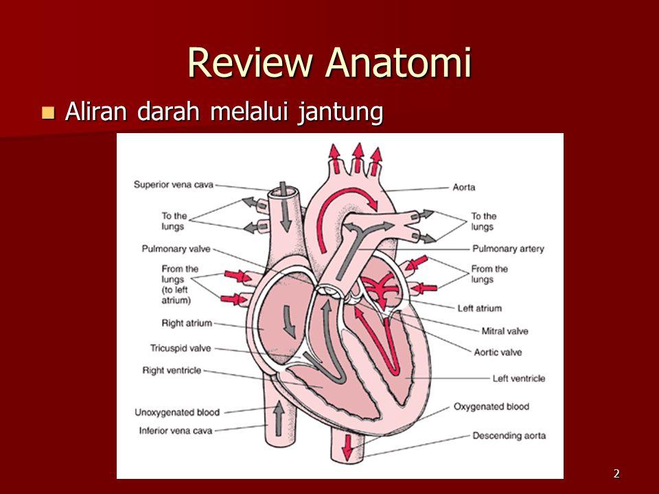 2 Review Anatomi Aliran darah melalui jantung Aliran darah melalui jantung