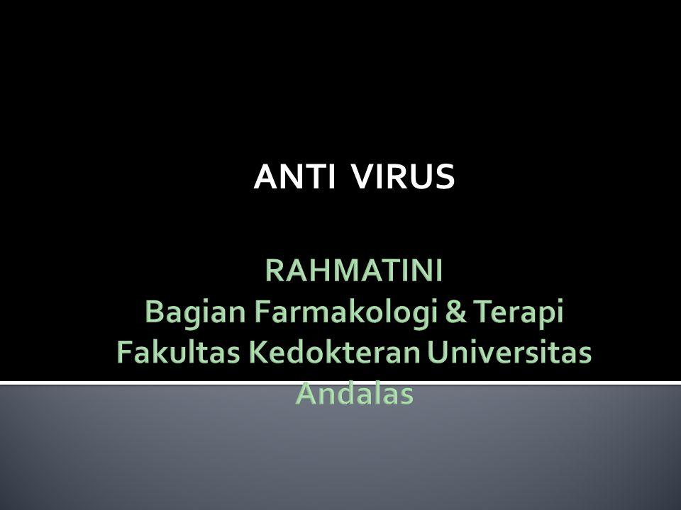 IMUNOGLOBULIN Mencegah & Mengobati infeksi virus (hepatitis, rabies) Diberikan secara par enteral (injeksi)