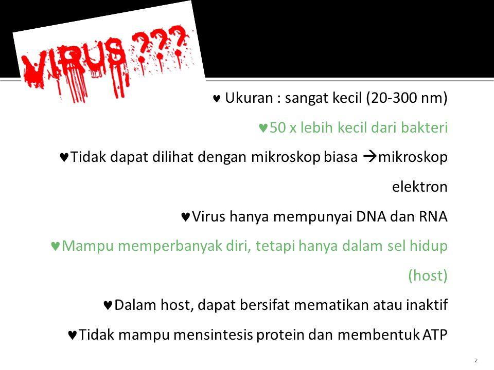  Indikasi : Infeksi HIV dengan pneumonia  Interaksi dengan obat yang mendepresi Sum-sum Tulang & mengganggu fungsi ginjal ZIDOVUDIN