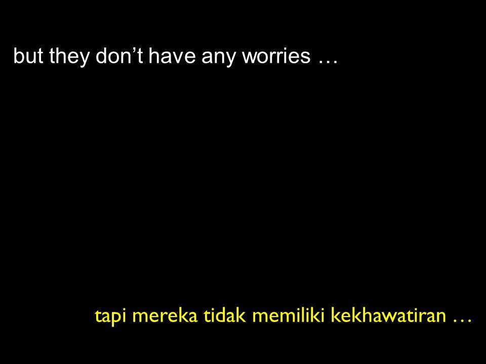 but they don't have any worries … tapi mereka tidak memiliki kekhawatiran …