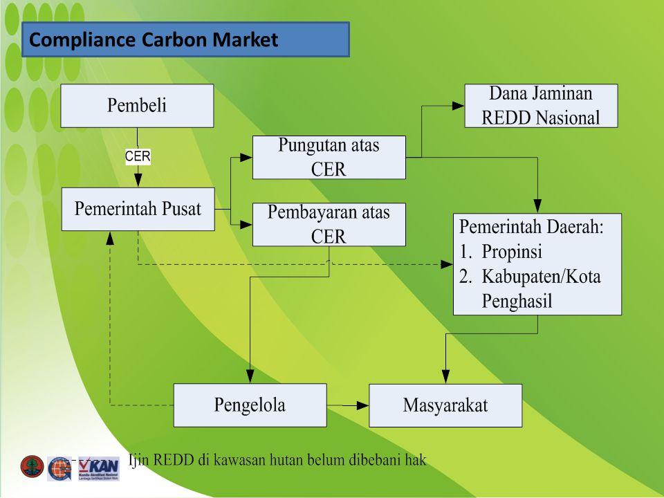 Compliance Carbon Market