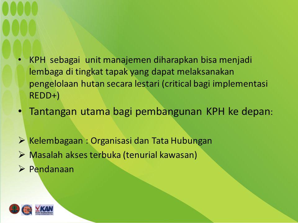 KPH sebagai unit manajemen diharapkan bisa menjadi lembaga di tingkat tapak yang dapat melaksanakan pengelolaan hutan secara lestari (critical bagi implementasi REDD+) Tantangan utama bagi pembangunan KPH ke depan :  Kelembagaan : Organisasi dan Tata Hubungan  Masalah akses terbuka (tenurial kawasan)  Pendanaan