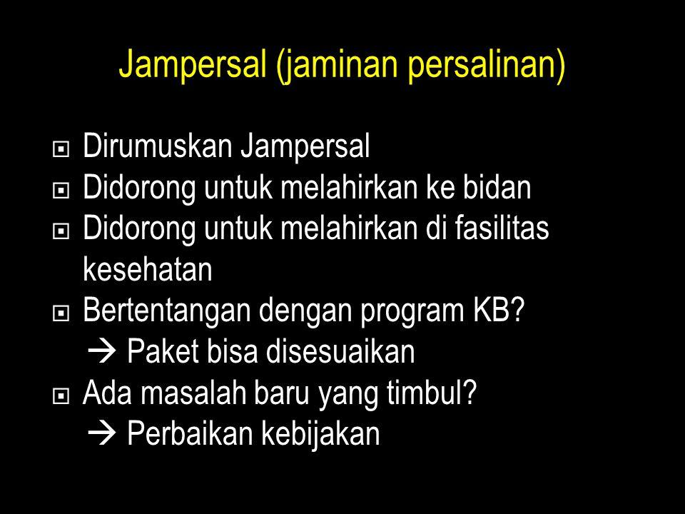Jampersal (jaminan persalinan)  Dirumuskan Jampersal  Didorong untuk melahirkan ke bidan  Didorong untuk melahirkan di fasilitas kesehatan  Bertentangan dengan program KB.