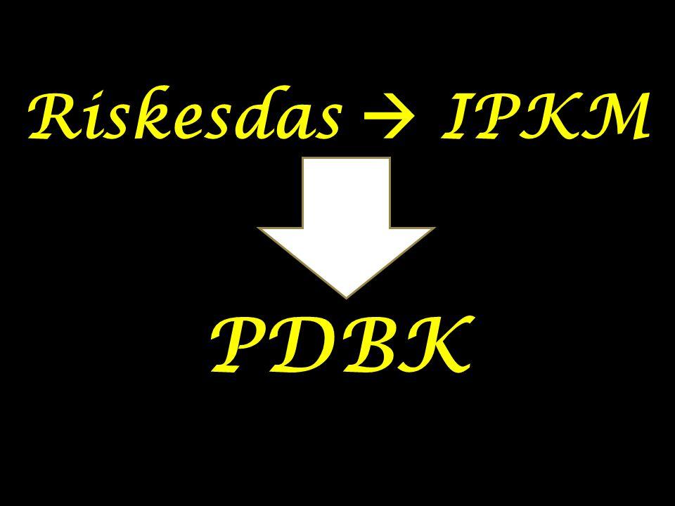 Riskesdas  IPKM PDBK