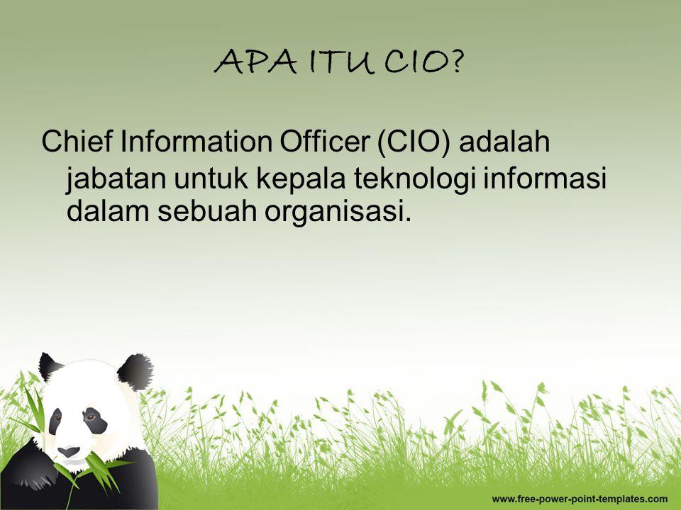 APA ITU CIO.