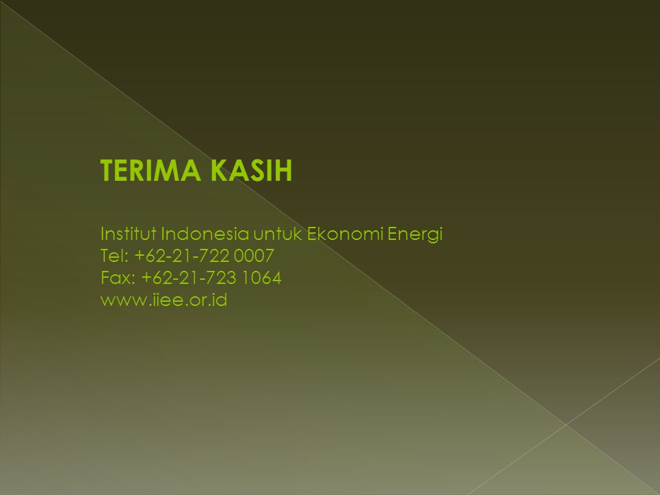 TERIMA KASIH Institut Indonesia untuk Ekonomi Energi Tel: +62-21-722 0007 Fax: +62-21-723 1064 www.iiee.or.id