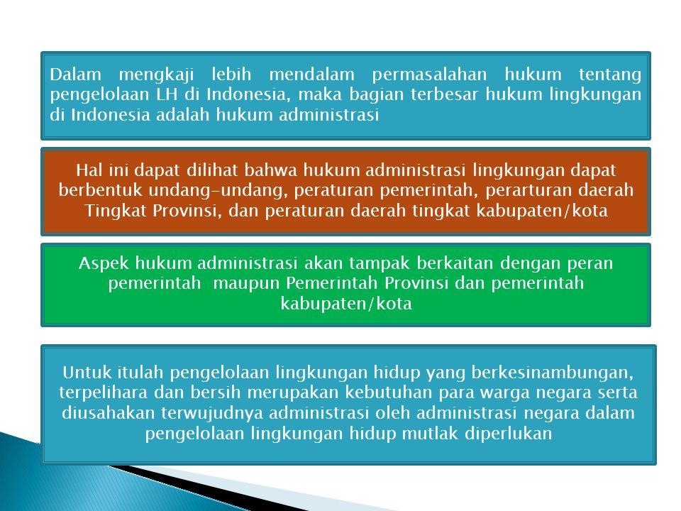 Dalam mengkaji lebih mendalam permasalahan hukum tentang pengelolaan LH di Indonesia, maka bagian terbesar hukum lingkungan di Indonesia adalah hukum