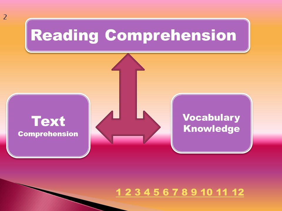 Reading Comprehension Vocabulary Knowledge Text Comprehension 2 1 2 3 4 5 6 7 8 9 10 11 12
