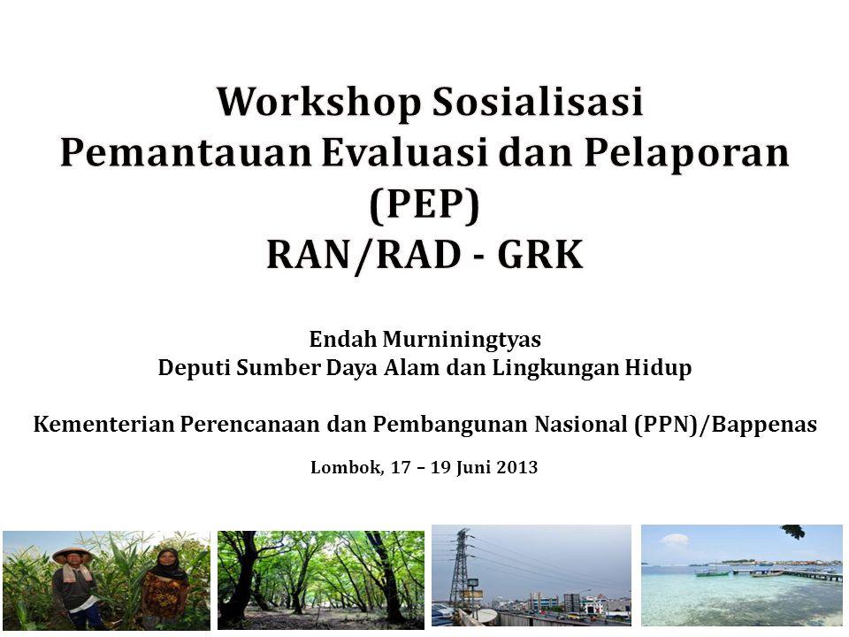 Endah Murniningtyas Deputi Sumber Daya Alam dan Lingkungan Hidup Kementerian Perencanaan dan Pembangunan Nasional (PPN)/Bappenas Lombok, 17 – 19 Juni 2013 1