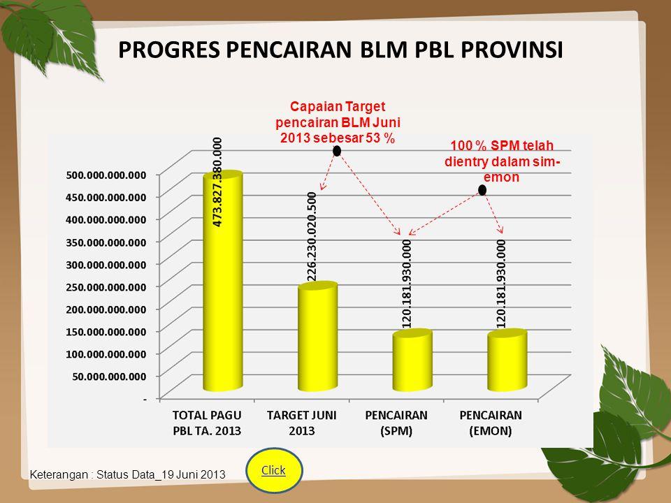PROGRES PENCAIRAN BLM PBL PROVINSI Keterangan : Status Data_19 Juni 2013 Capaian Target pencairan BLM Juni 2013 sebesar 53 % 100 % SPM telah dientry d