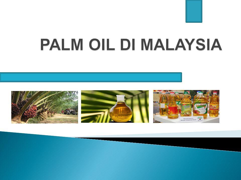 PERKEMBANGAN INDUSTRI PALM OIL DI MALAYSIA Palm Oil (Elaeis guineensis) pertama kali diperkenalkan di Malaysia sebagai tanaman hias pada tahun 1870.