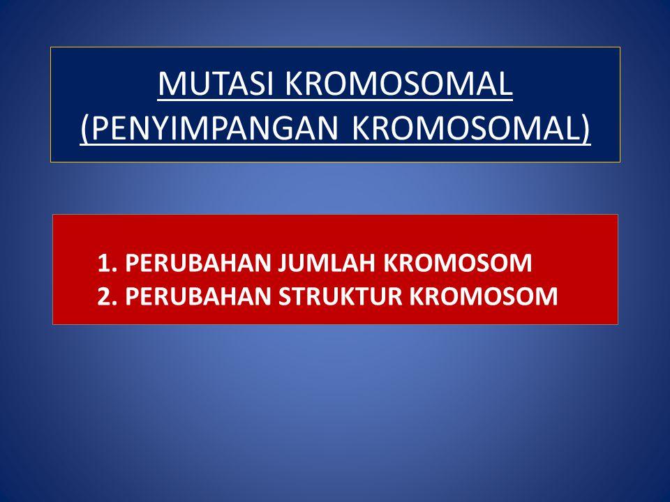 MUTASI KROMOSOMAL (PENYIMPANGAN KROMOSOMAL) 1. PERUBAHAN JUMLAH KROMOSOM 2. PERUBAHAN STRUKTUR KROMOSOM