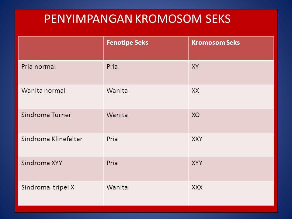 PENYIMPANGAN KROMOSOM SEKS Fenotipe SeksKromosom Seks Pria normalPriaXY Wanita normalWanitaXX Sindroma TurnerWanitaXO Sindroma KlinefelterPriaXXY Sind