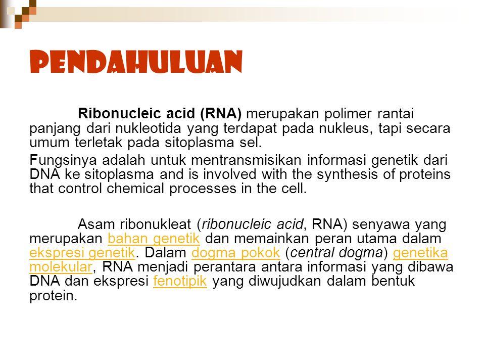Pendahuluan Ribonucleic acid (RNA) merupakan polimer rantai panjang dari nukleotida yang terdapat pada nukleus, tapi secara umum terletak pada sitopla