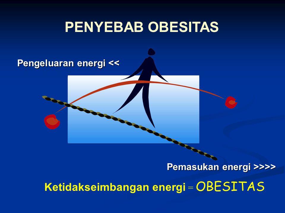 Pemasukan energi >>>> Pengeluaranenergi << Pengeluaran energi << Ketidakseimbangan energi = OBESITAS PENYEBAB OBESITAS