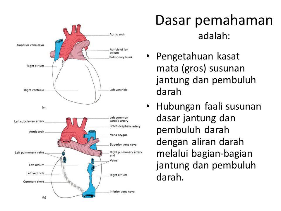 Dasar pemahaman adalah: Pengetahuan kasat mata (gros) susunan jantung dan pembuluh darah Hubungan faali susunan dasar jantung dan pembuluh darah denga