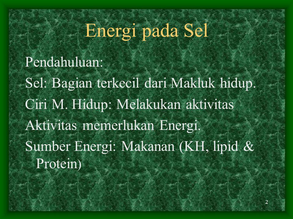1 ENERGI PADA SEL JULIZAR BAGIAN FISIKA KEDOKTERAN FAK. KEDOKTERAN UNAND