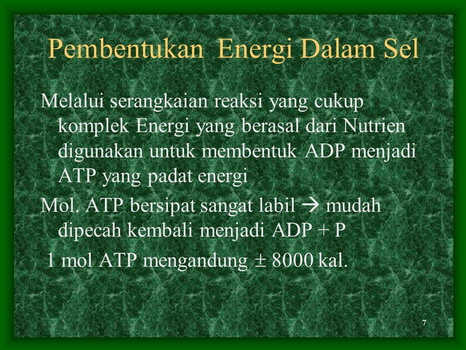 7 Pembentukan Energi Dalam Sel Melalui serangkaian reaksi yang cukup komplek Energi yang berasal dari Nutrien digunakan untuk membentuk ADP menjadi ATP yang padat energi Mol.