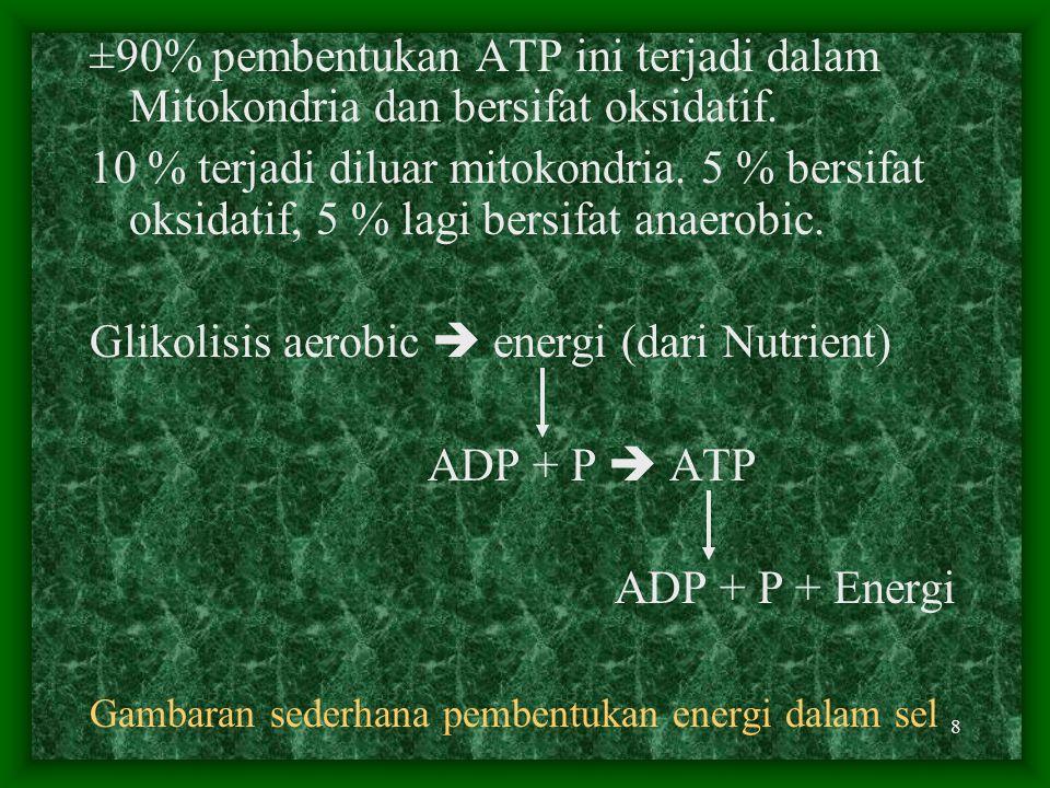 7 Pembentukan Energi Dalam Sel Melalui serangkaian reaksi yang cukup komplek Energi yang berasal dari Nutrien digunakan untuk membentuk ADP menjadi AT