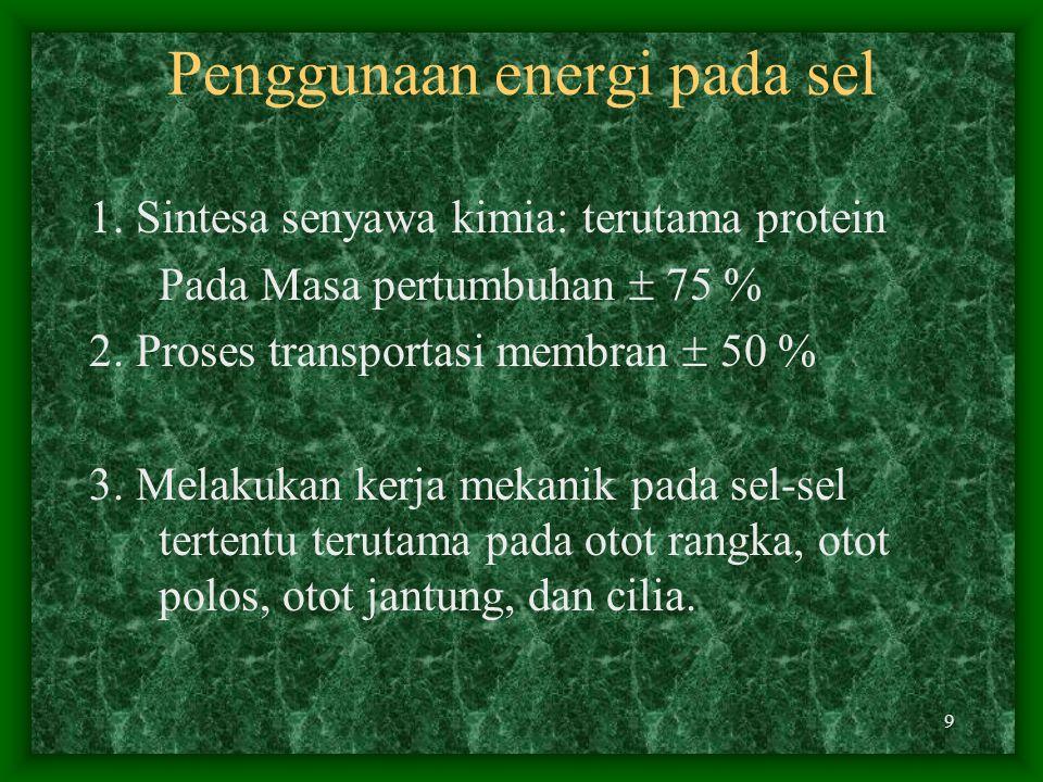 8 ±90% pembentukan ATP ini terjadi dalam Mitokondria dan bersifat oksidatif. 10 % terjadi diluar mitokondria. 5 % bersifat oksidatif, 5 % lagi bersifa