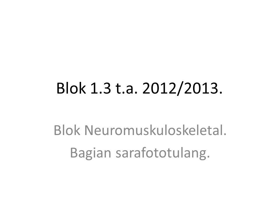 Blok 1.3 t.a. 2012/2013. Blok Neuromuskuloskeletal. Bagian sarafototulang.